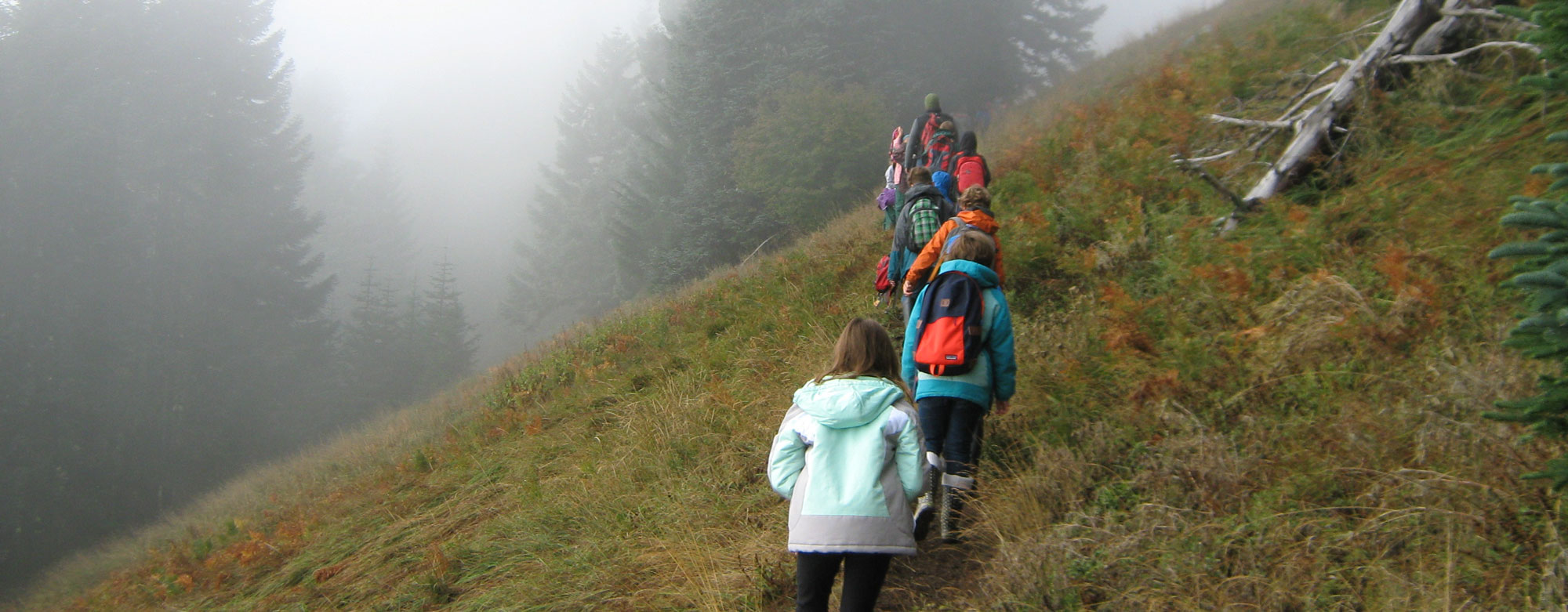 Students hiking